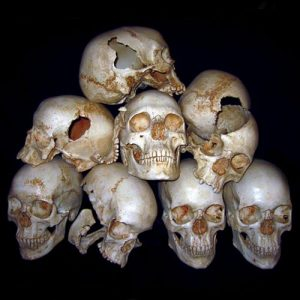 On the difference between Persian and Egyptian skulls…..