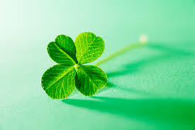 A very short history of the Four-Leaf Clover…..