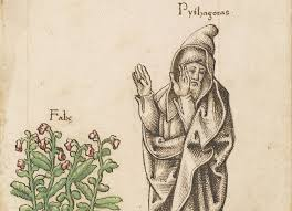 Pythagoras, beans and death…….