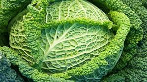 Cabbages are bad for you…..